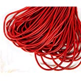 10g Scarlet Red Round Smooth Copper Hand Embroidery French Fine Metallic Wire Goldwork Bullion Luneville Tambour Indian Gimp Dabka Purl (Color: Scarlet Red, Tamaño: 1mm)