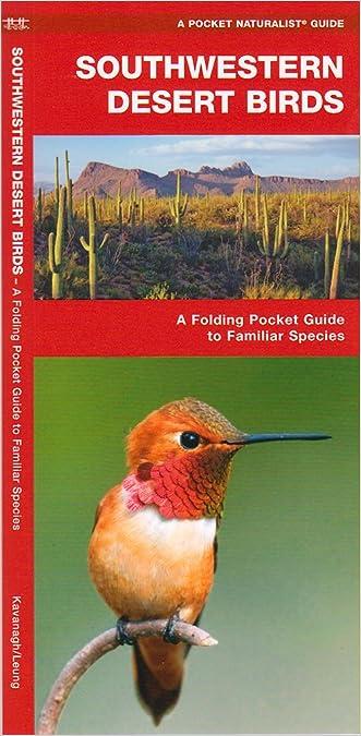 Southwestern Desert Birds: An Introduction to Familiar Species