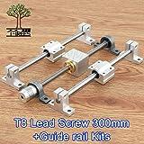 3D Printer - 300mm 3D Printer Guide Rail Sets T8 Lead Screw Length 300mm Linear Shaft 8300mm+KP08 SK8 SC8UU+nut housing+Coupling+Step Motor - (Size: 300mm-17HS2408S) (Color: 300mm-17HS2408S, Tamaño: 300mm-17HS2408S)