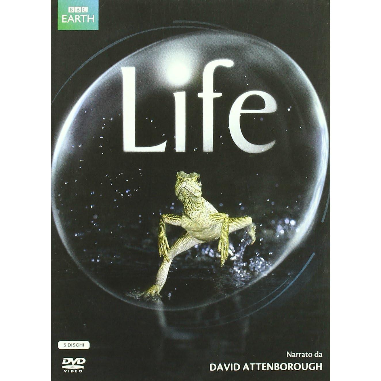 BBC: Жизнь. Млекопитающие