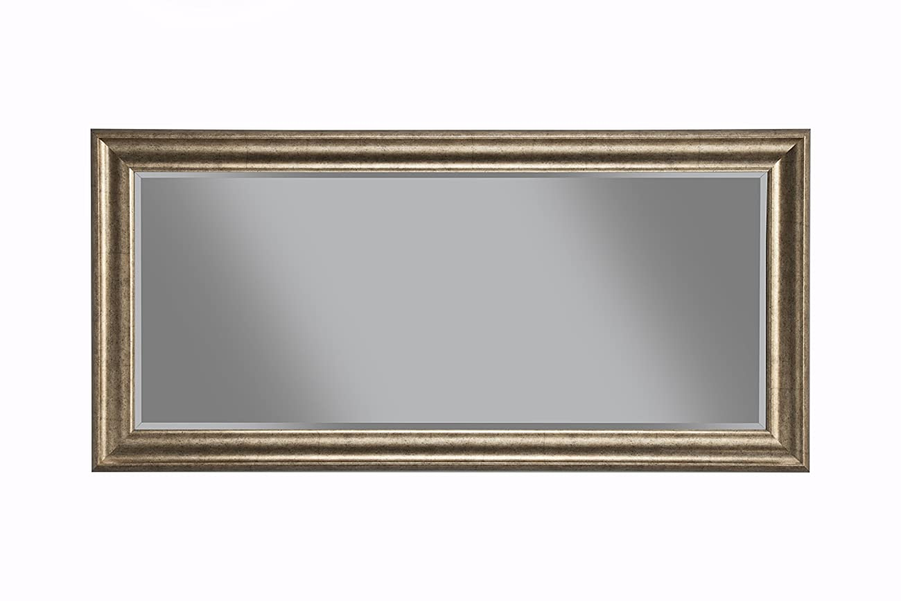 Sandberg Furniture 14111 Full Length Leaner Mirror Frame, Antique Gold 1