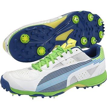 puma cricket shoes cheap   OFF35% Discounted f4aeb7906