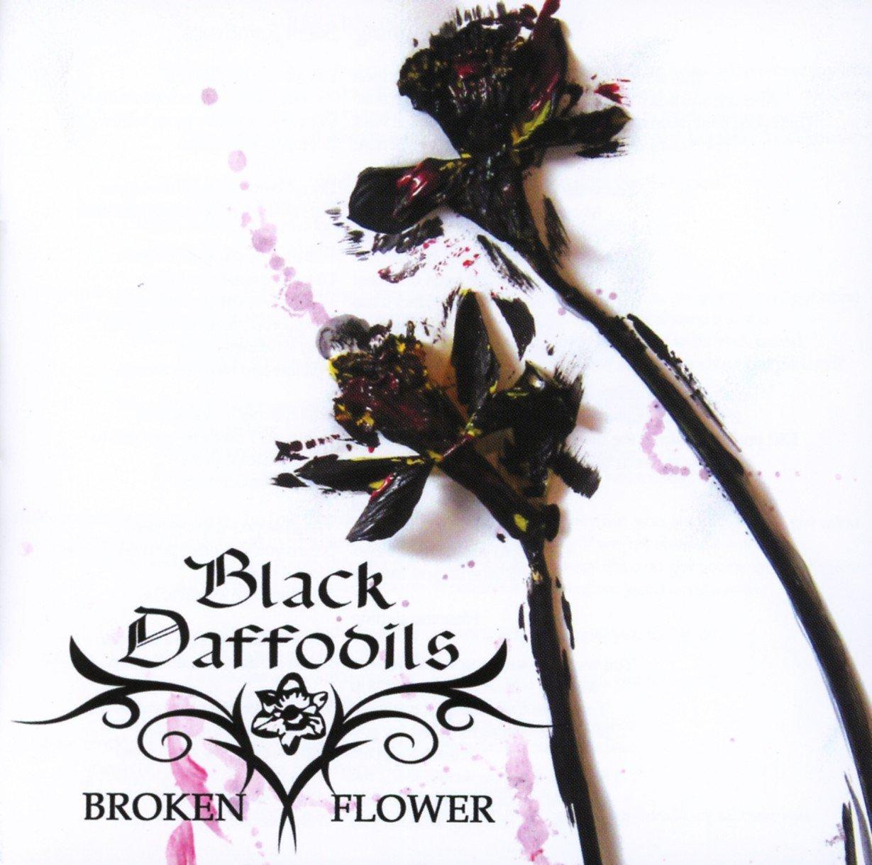Black Daffodils - Broken Flower