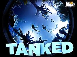 Tanked Season 3