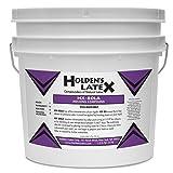 HX-80LA Low Ammonia Liquid Latex Mold Making Rubber (Gallon) (Tamaño: Gallon)