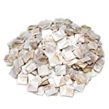 Tueascallk 1.2 Lbs / 300 Pcs of Natural Mother of Pearl Mosaic Tiles, for Home Decoration and Handmade Crafts, 0.8