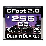 Delkin 256GB Cinema CFast 2.0 Memory Card (DDCFST560256) (Tamaño: 256GB)