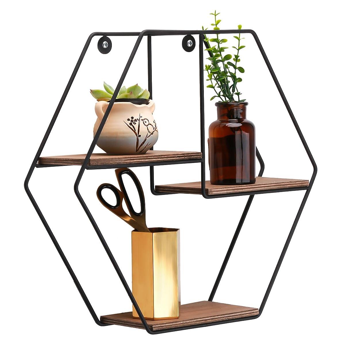 Kufox Hexagon Industrial Decorative Hexagon Metal Frame 2-Tier Wooden Floating Shelf