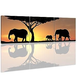 Bilderdepot24 Leinwandbild Panorama Elefanten im Sonnenuntergang 240x80cm 3tlg. fertig gerahmt, direkt vom Hersteller   Kundenbewertungen