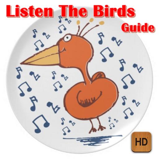 Listen The Birds Guide
