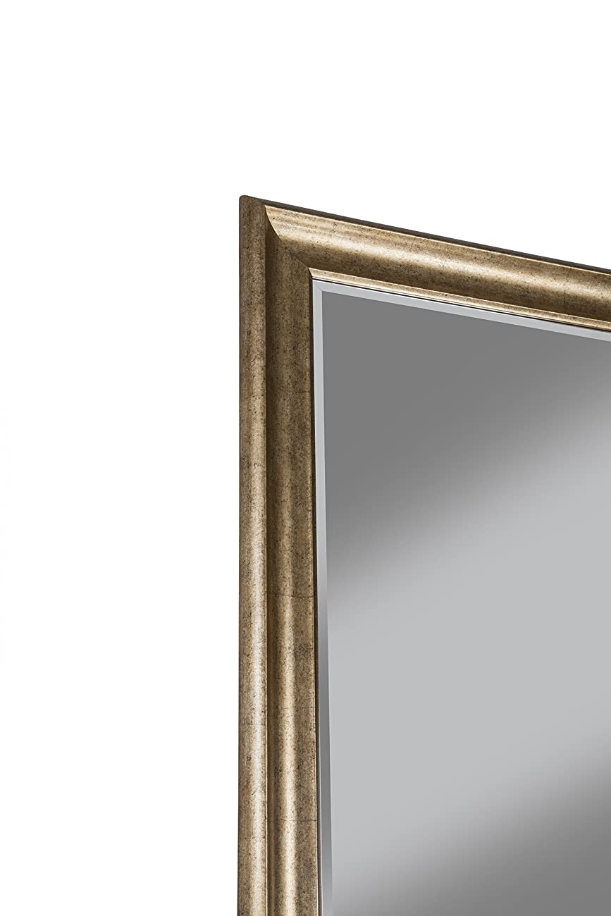 Sandberg Furniture 14111 Full Length Leaner Mirror Frame, Antique Gold 4