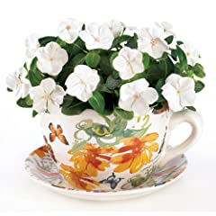 Gifts & Decor Butterfly Print Teacup Saucer Decorative Garden Planter