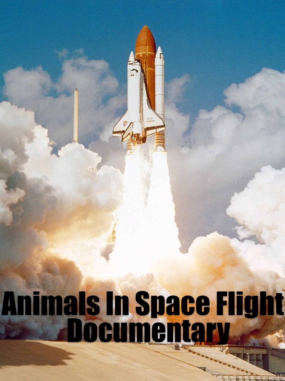 Animals In Space Flight: Documentary