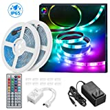 LED Strip Lights 32.8ft, MINGER Waterproof RGB LED Light Strip 300 LEDs Color Changing LED Lights with 44 Key IR Remote Control Ideal for Room, Home, Kitchen, Party, Christmas (Color: Rgb (Red, Green, Blue), Tamaño: 32.8Ft)