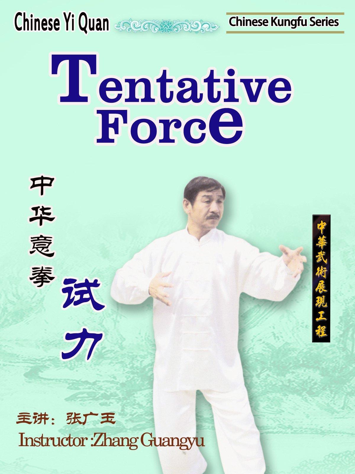 Chinese Yi Quan-Tentative Force(Instructor :Zhang Guangyu) on Amazon Prime Video UK