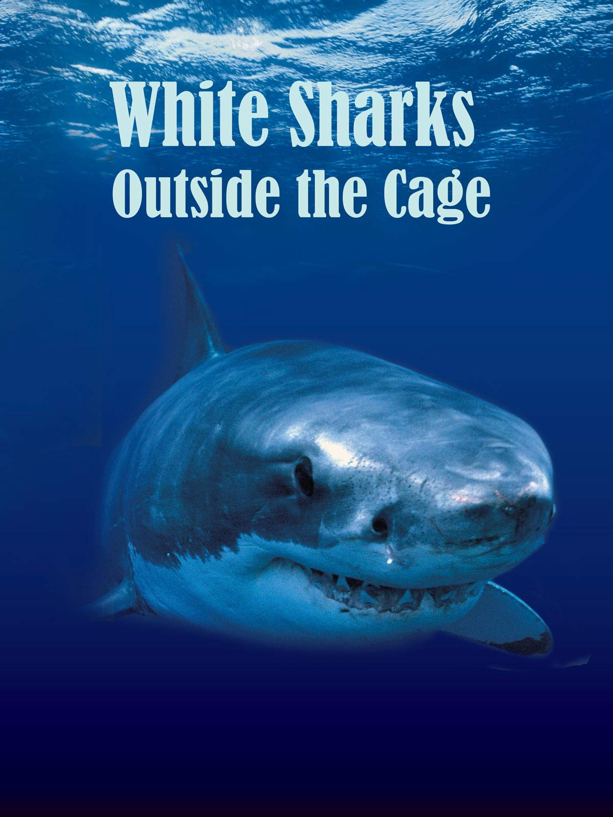 White Sharks Outside the Cage on Amazon Prime Instant Video UK