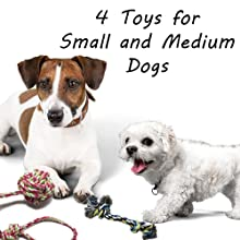 Otterly Pets Puppy Dog Pet Rope