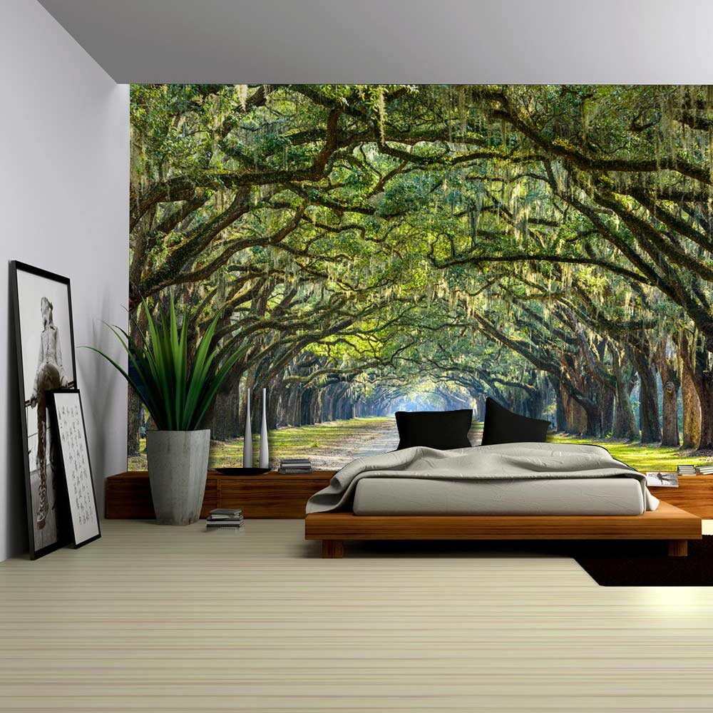 Long pathway in an arch tree covered forest wall mural for Amazon wall mural