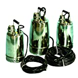 AMT Pump 02X11 Submersible Pump, Stainless Steel 304, 1 HP, 115V, Curve C, 2