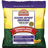 Pennington Bare Spot Repair Mix Central, 1-Pound