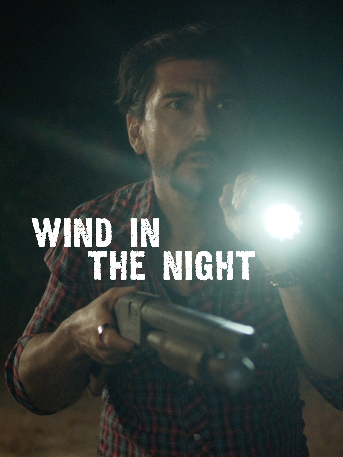 Wind in the Night