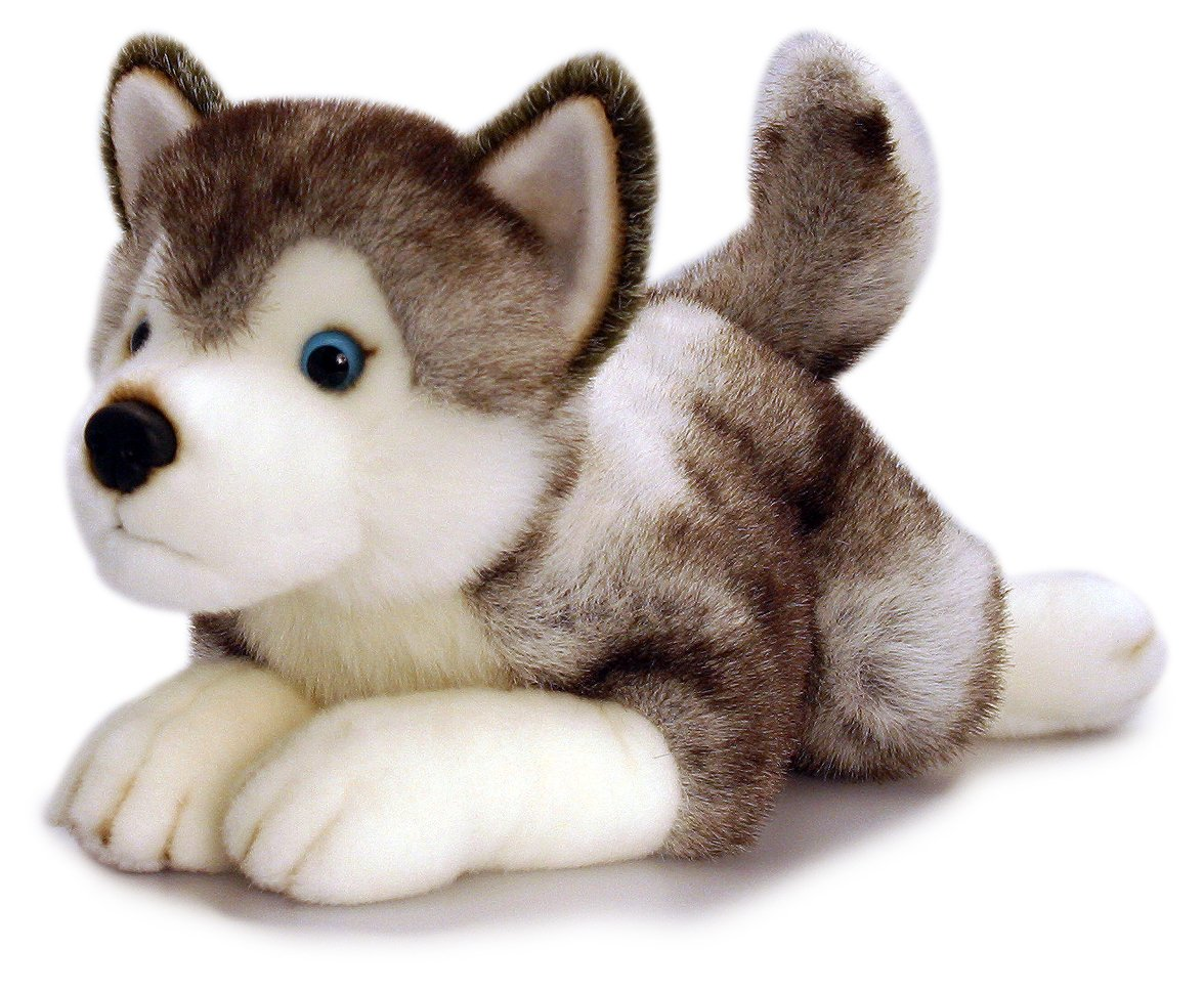 Stuffed Toy Dog Husky Puppy
