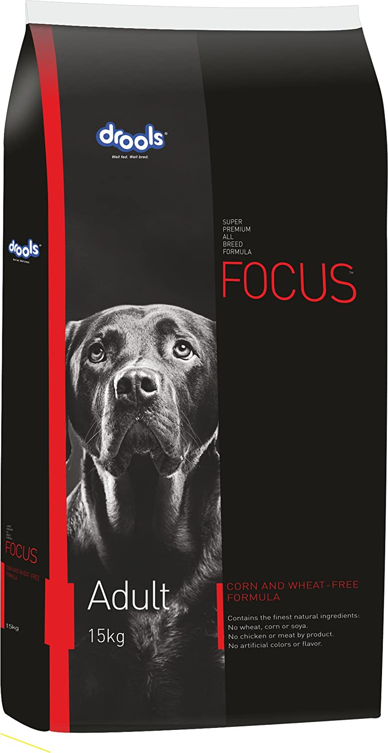 drools focus dog for labrador retriever