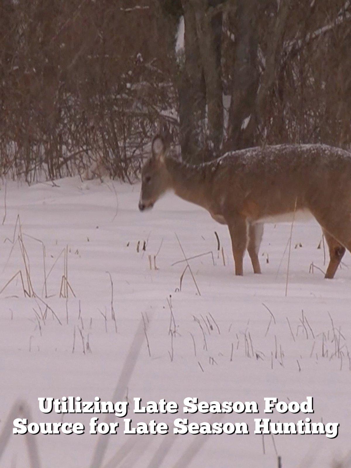 Utilizing Late Season Food Source for Late Season Hunting