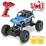 RC Car, SHARKOOL 2018 Newest 2.4Ghz 4WD RC Trucks 1/18 Scale Remote Control Car with Two Rechargeable Batteries, Off Road RC Crawlers Toy Car for Adults & Kids (Color: Blue)