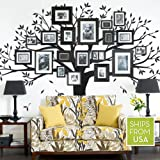 Family Tree Wall Decal