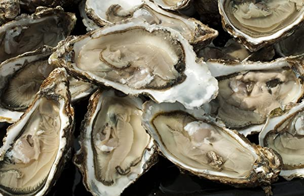 March 31 is National Oysters on the Half Shell Day