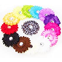 Ema Jane - 13 Assorted Cute Large Gerber Daisy Flower Hair Clips Bows - (Head Bands NOT Included) Toddlers Infants Baby Youth Girls