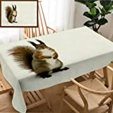 Unique Custom Design Cotton and Linen Blend Tablecloth Red Little Squirrel Standing On The Snow in Winter Park Tablecovers for Rectangle Tables, 60