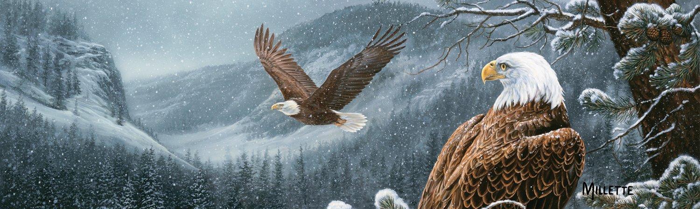 VantagePoint  Birds-Eagle