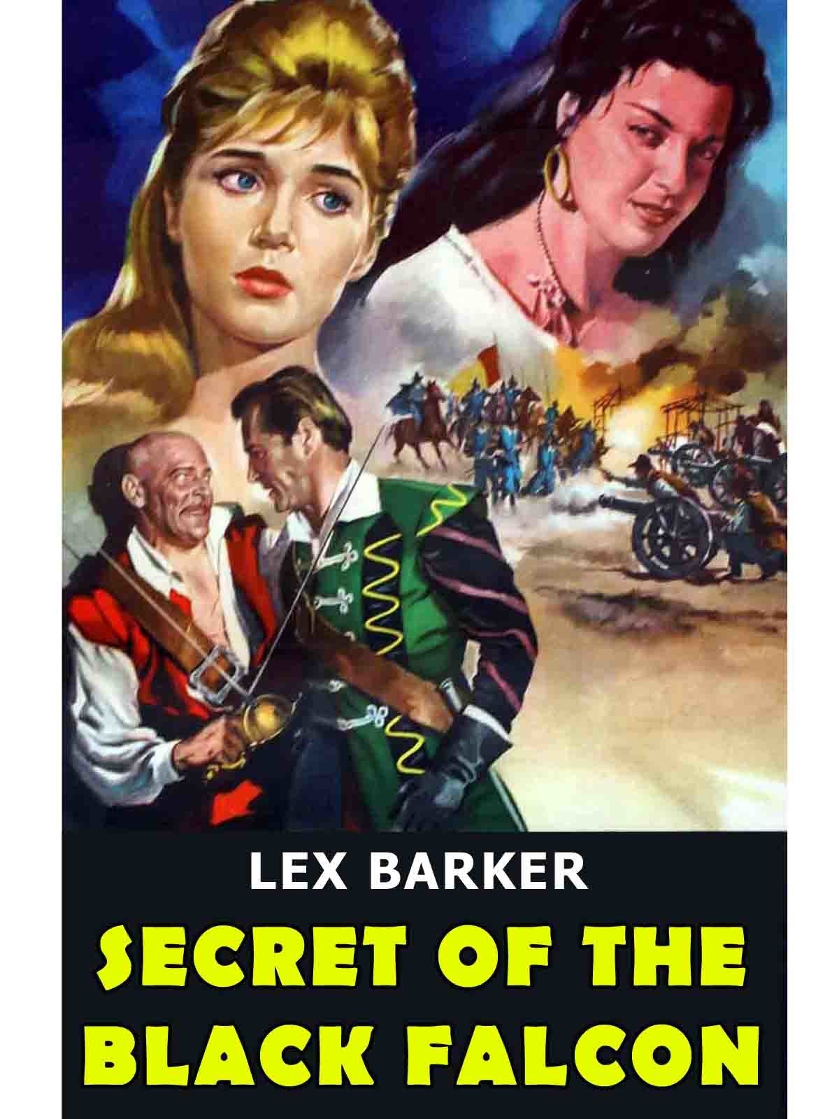 Secret Of The Black Falcon