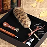 PASSION juneTree Calligraphy Pen Feather Writing Quill pens Antique Owl Feather Metal Nibbed Pen