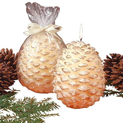 White with Gold Edge Pine Cone Candle by The Renovators Supply