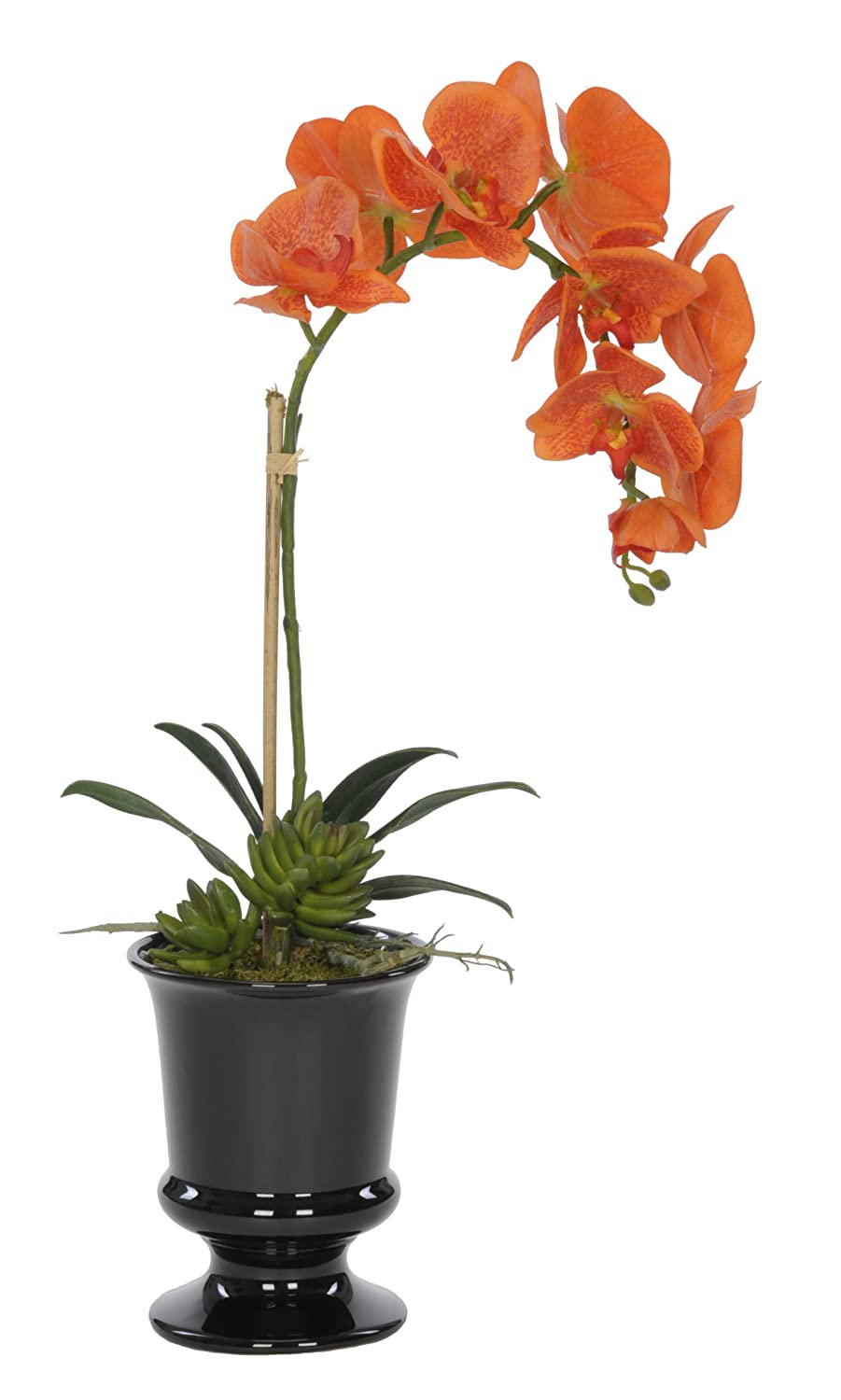 House of Silk Flowers Artificial Orange Phalaenopsis Orchid in Black Ceramic Urn