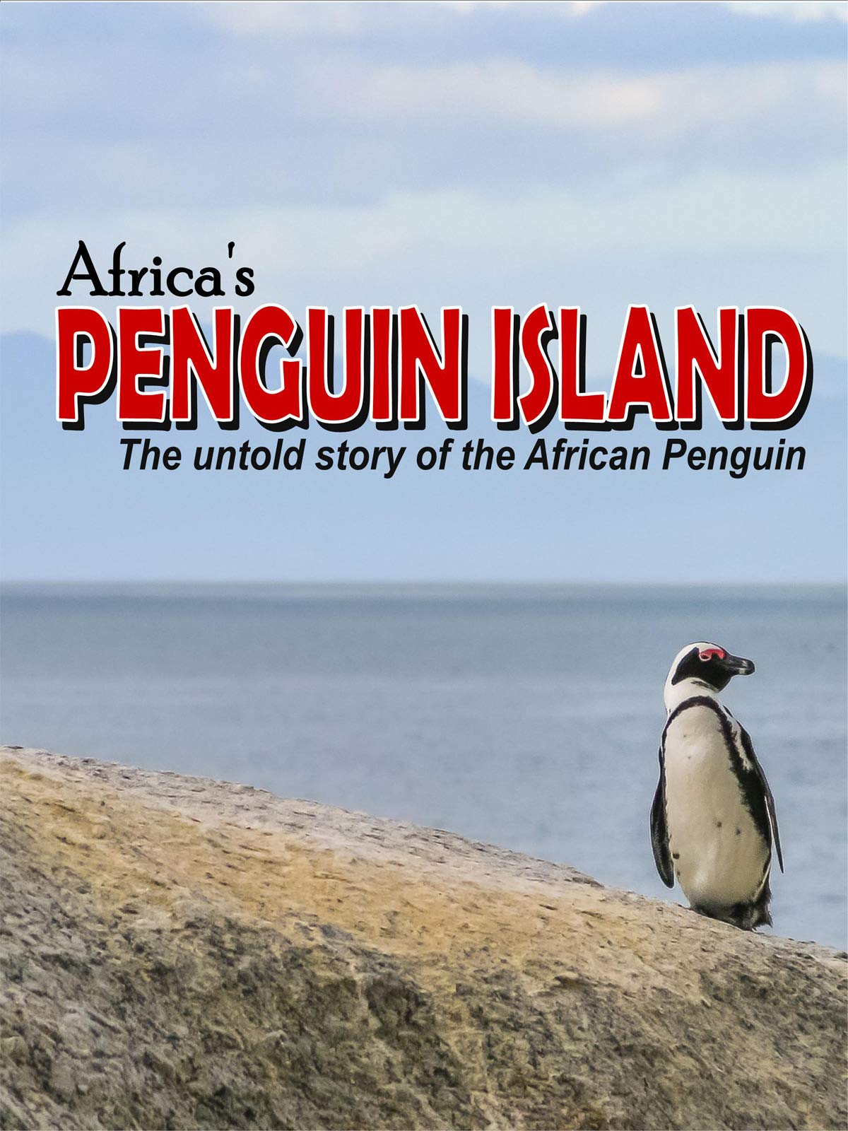 Africa's Penguin Island on Amazon Prime Video UK