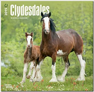 Clydesdales 2015 Square 12x12
