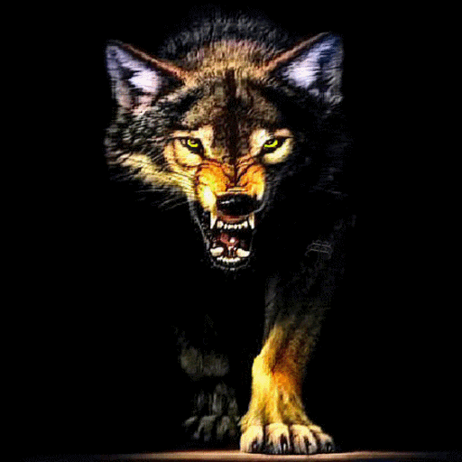Amazon.com: Wolf Growl Live Wallpaper: Appstore for Android