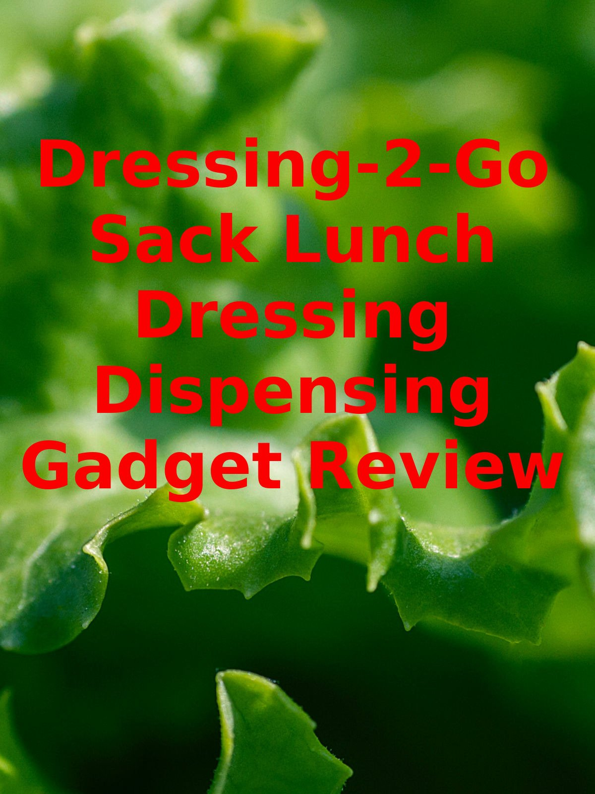 Review: Dressing-2-Go Sack Lunch Dressing Dispensing Gadget Review on Amazon Prime Video UK