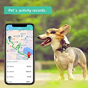 Pet GPS Tracker for Dogs Cats,No Monthly fee, Real-Time Tracking Device for Multiple Pets(Tracker+Controller) (Tamaño: Tracker+Controller)