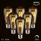 LED Dimmable Vintage Edison Led Bulbs 6W Antique Style, 2300K Warm White (Amber Gold Glass), Squarrel Cage Filament,ST64, E26 Base