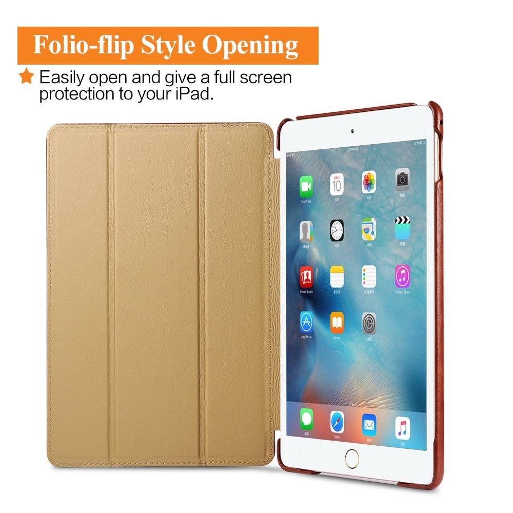 Buy Web Folio Now!