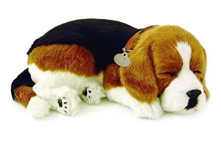 Perfect Petzzz - 65401 - Peluche Interactive - Chien - Beagle - Animal Qui Respire Pour de Vrai - 25 cm
