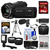 Panasonic HC-V770 Wireless Smartphone Twin Wi-Fi HD Video Camera Camcorder + 64GB Card + Case + LED Light + Microphone + Tripod + Tele/Wide Lens Kit (Color: Black)