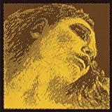 Pirastro Evah Pirazzi Gold Violin String Set - Silver Wound G - Ball E - Medium Gauge