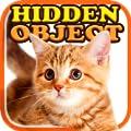 Hidden Object - Cat Sweet Life