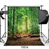 SJOLOON 10x10ft Nature Forest Theme Vinyl Cloth Photo Backdrops Customized Studio Background Studio Props 10516 (Color: 10516 10x10FT, Tamaño: 10X10FT)
